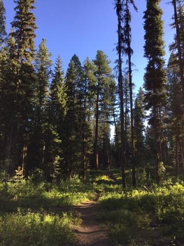 Ponderosa State Park, McCall, ID