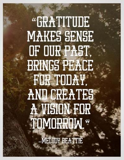 6425c9540a3deb847305feaa503bcff2--attitude-of-gratitude-gratitude-quotes.jpg