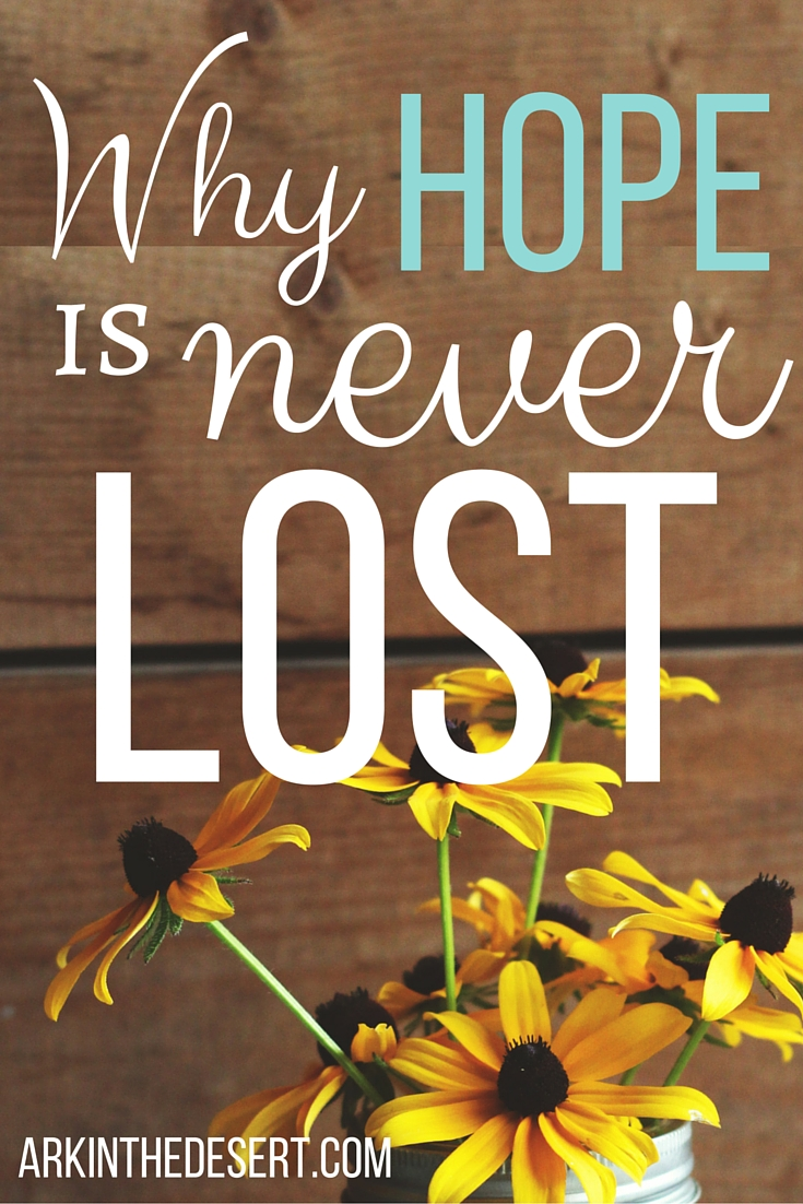 Why Hope is Never Lost even though we often times feel it is.