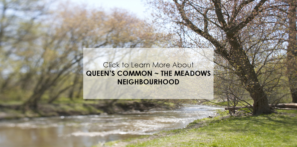 queens meadows neighbourhood copy.jpg