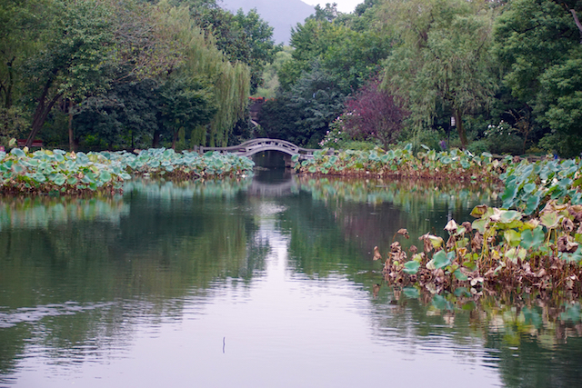 one of the many arched bridges around west like in hangzhou, Zhejiang, China.