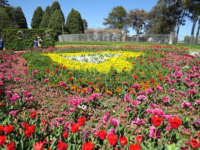 Flower Heart copy.jpg