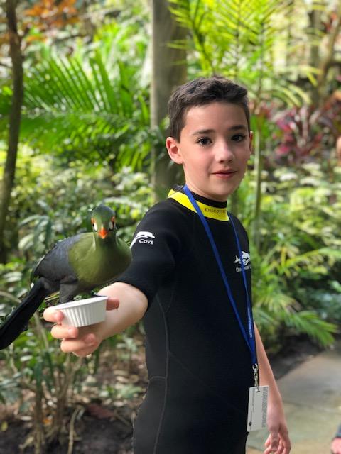 My son, the Bird Boy.