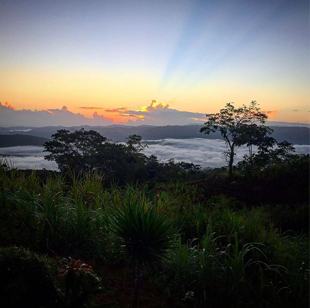 #sograteful #costarica🇨🇷 #5amsunrise  #compassioning #keepitwild #whatawonderfulworld #travelwanderlust #worldwanderer