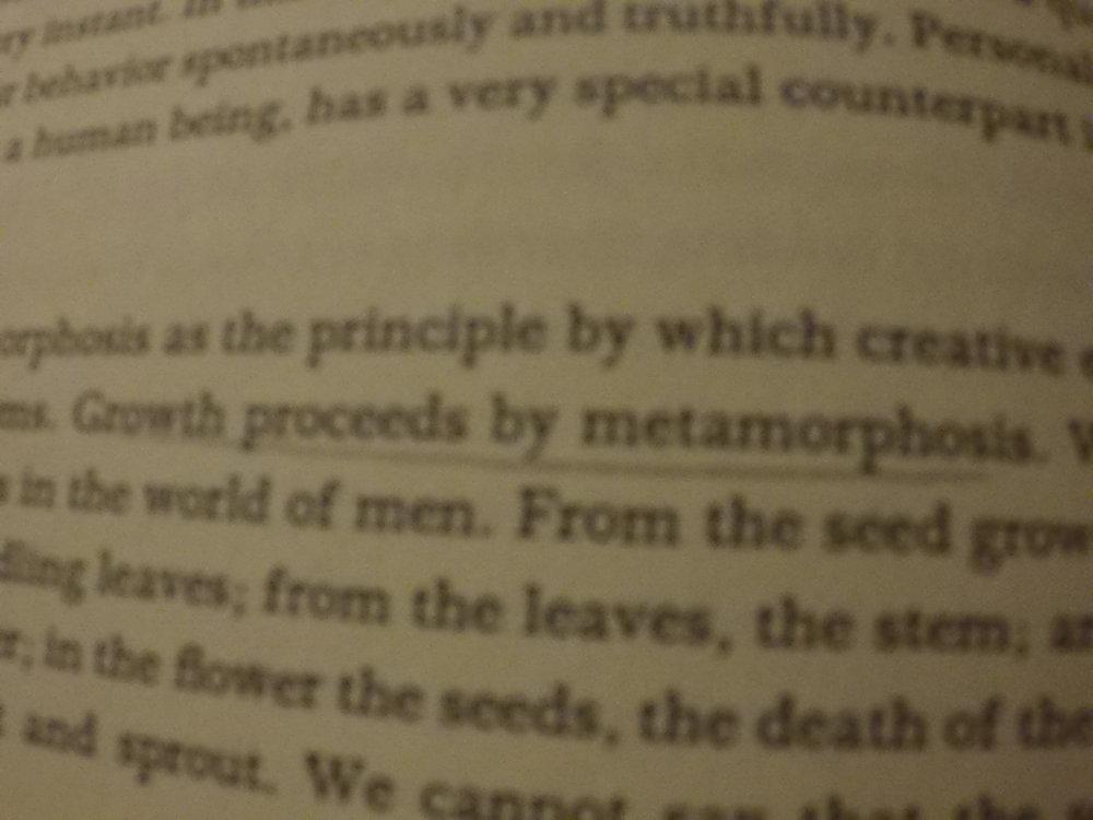 """""""Growth proceeds by metamorphosis"""" -"""