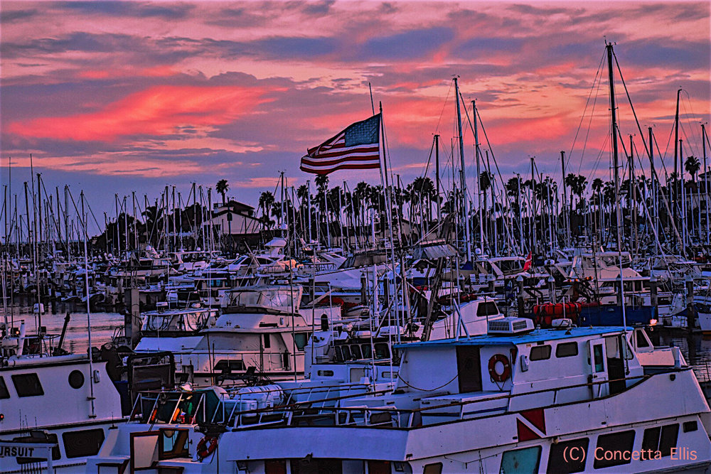 Flag@SunsetbyConcetta(C)Pink.jpg