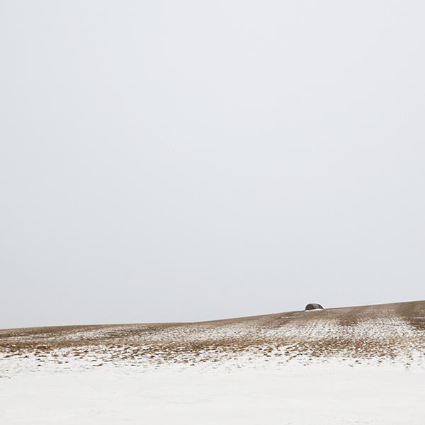 snowsky3.jpg