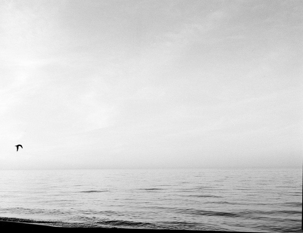 Beach_summer2018_1aS.jpg