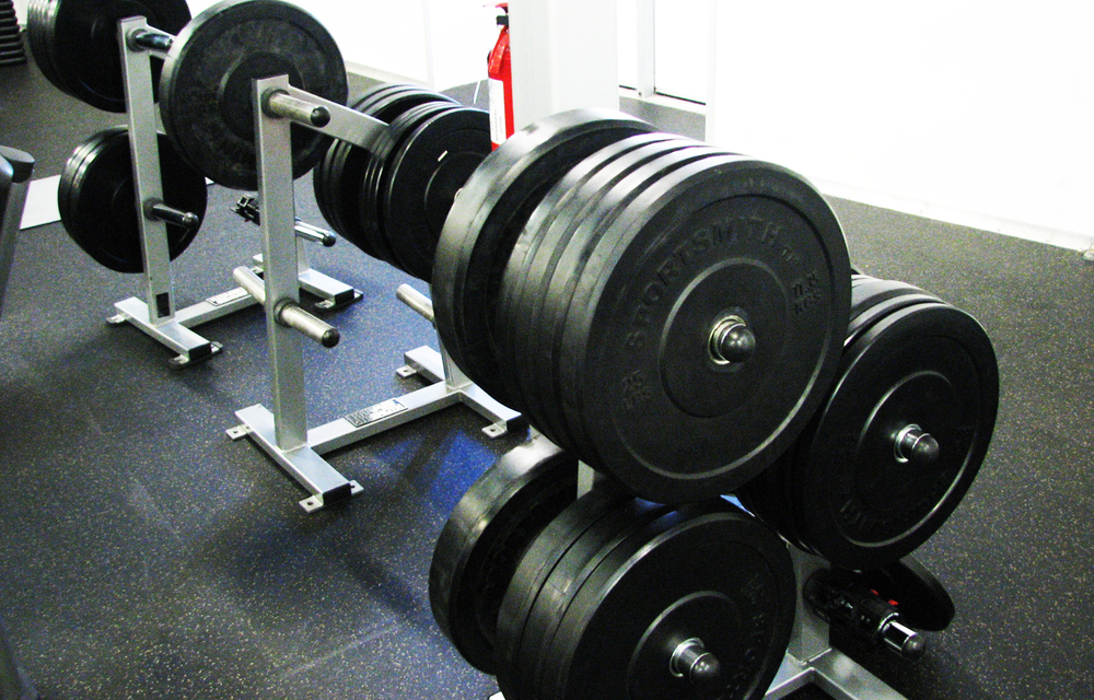 Bumper Plates  - competition style bumper plates