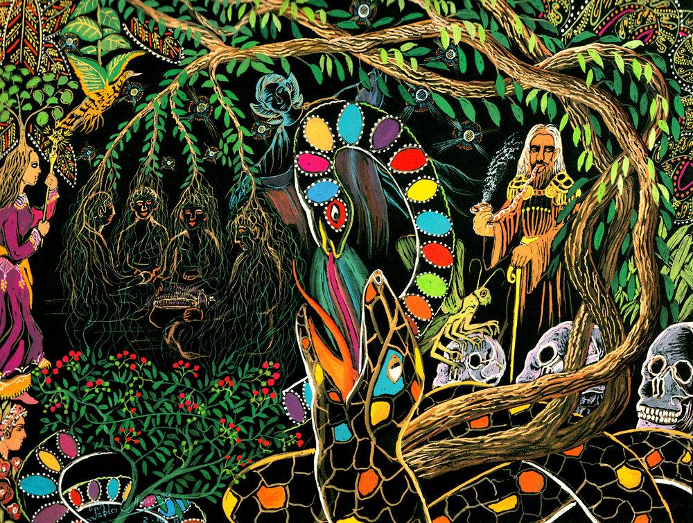 En esta pintura, Pablo Amaringo describe desde su propia visión y conocimiento, como es el matrimonio de las plantas que forman la Medicina. La liana de la Ayahuasca (Banisteropsis Caapi) y la Chacruna (Psychotria viridis), que juntas es como actúa para dar visiones y curación.