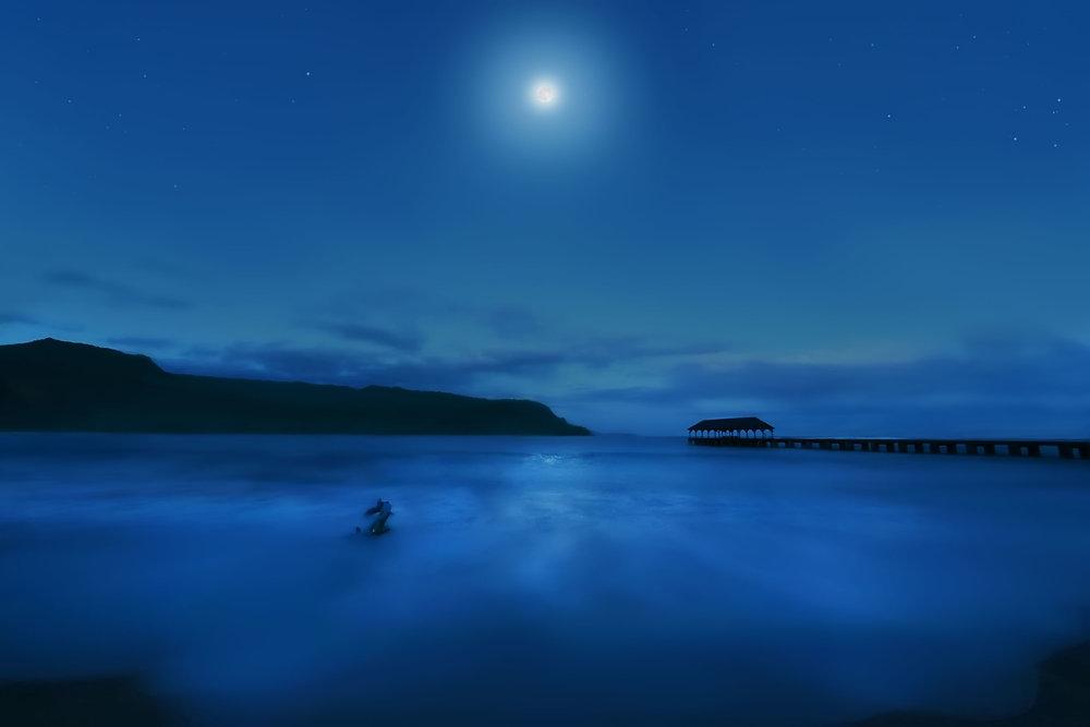 blueHawaiiForWeb.jpg
