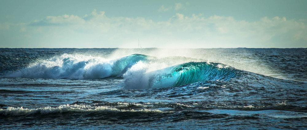 waveforweb.jpg