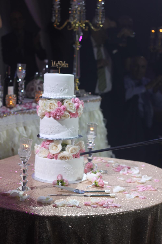 Nataly Elie wedding 612.JPG
