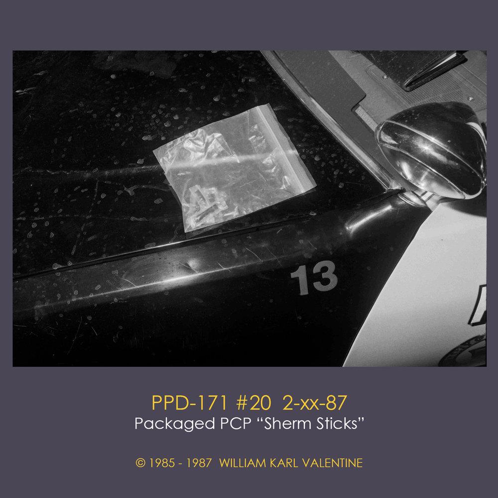 PPD-171 #20  2-xx-87.jpg