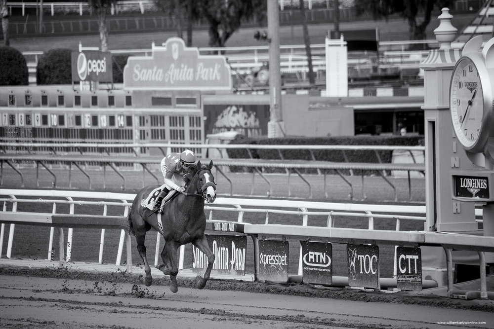 SA DSC 9458 03-11-18  Santa Anita Justify with Mike Smith up.jpg