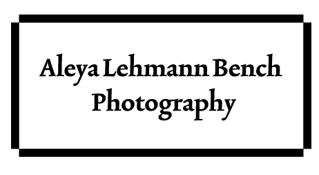 Aleya Lehmann Bench Photography