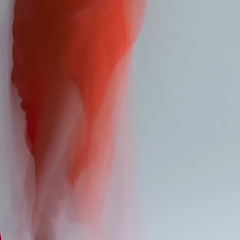 forms of things, 3 , 2014 20 x 20 in. Archival pigment print on Canson paper Edition of 5