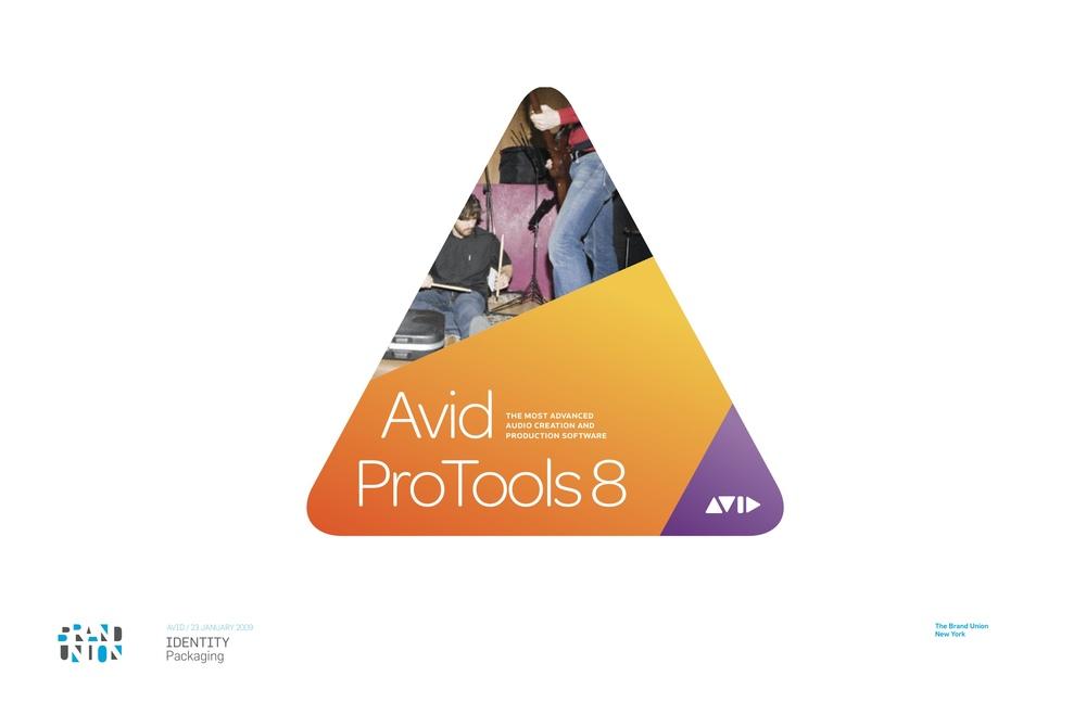 090123AvidPurple-08.jpg