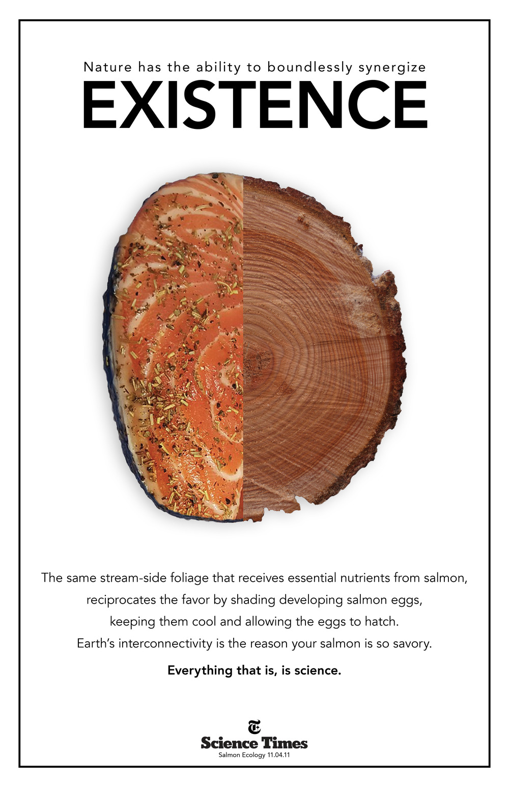 Science Salmon.jpg