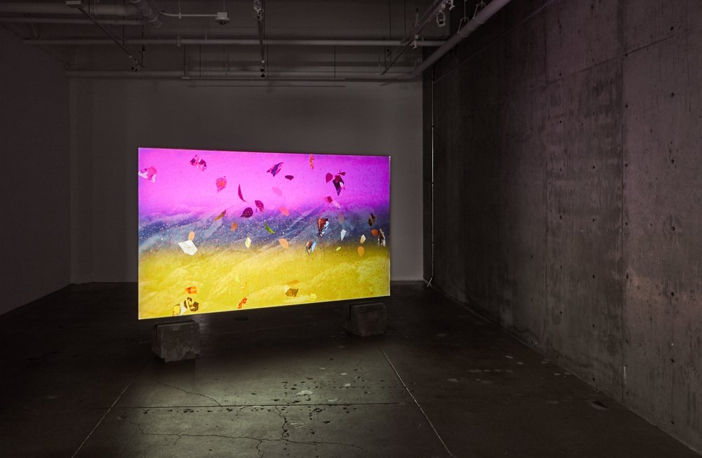 Shadowtime, Gallery Wendi Norris, San Francisco, 2017      Mixing Dusts, 2017, Hybrid Film Installation, digital video, BD-R projection on glass, 8min.33sec,     Photography by Johnna Arnold