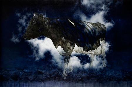 Bovine-Dreaming_T.jpg