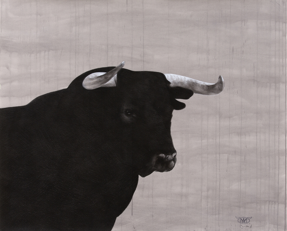 bull II  2015 chalk and charcoal on acrylic washed paper  120x 140cm