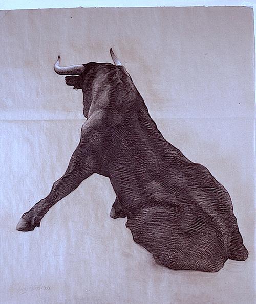 sitting bull  2015  charcoal & chalk on paper  110 x 70cm