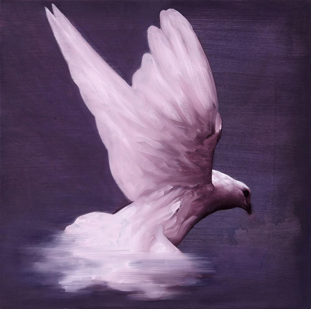 Dove III