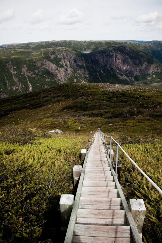 16 Newfoundland-27.jpg