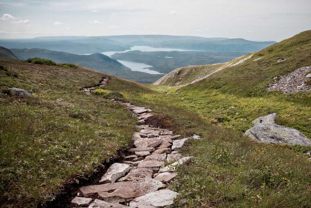 19 Newfoundland-25.jpg