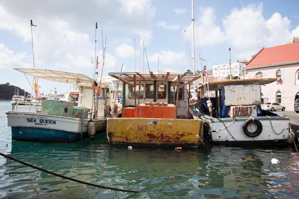 Grenada_WEB-12.jpg