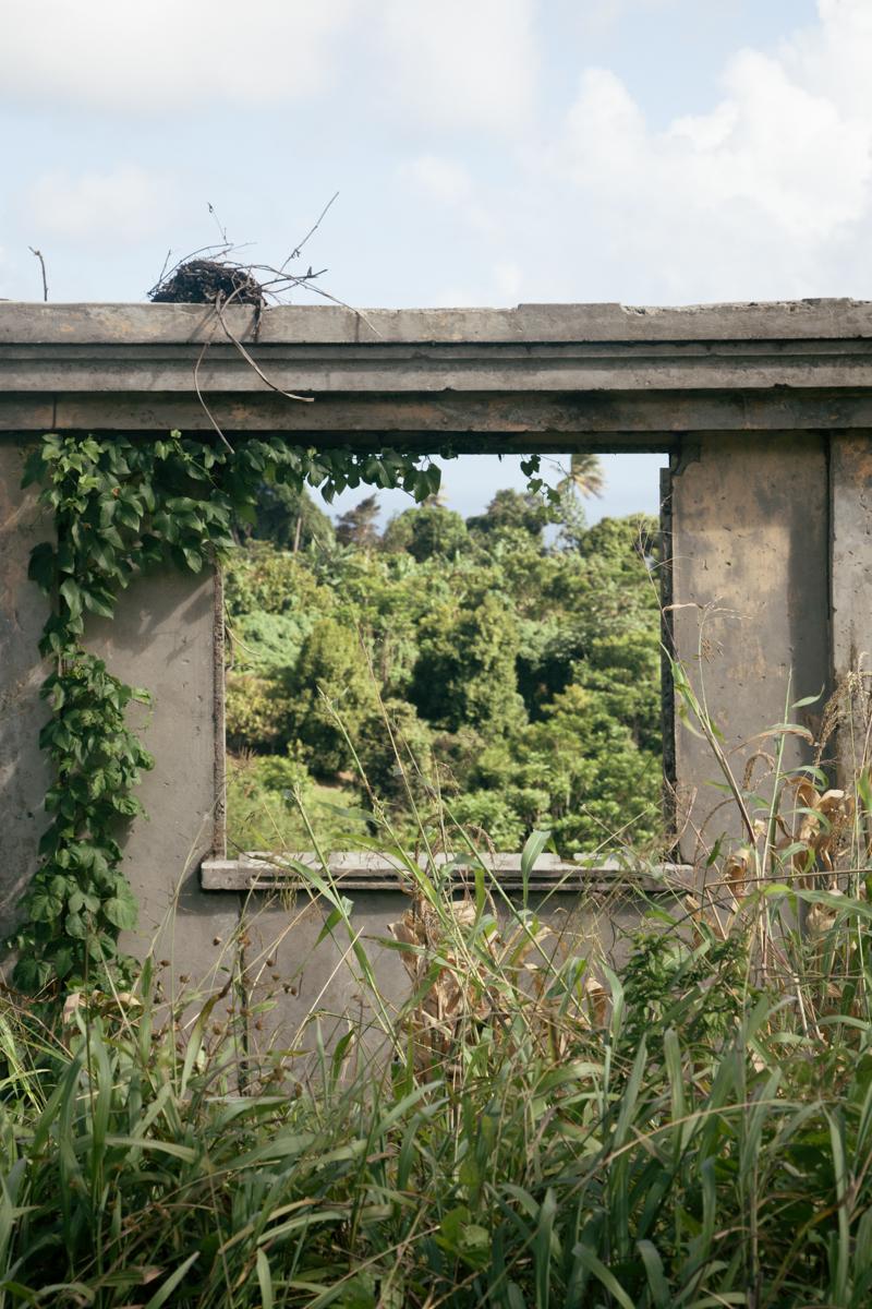 Grenada_WEB-18.jpg