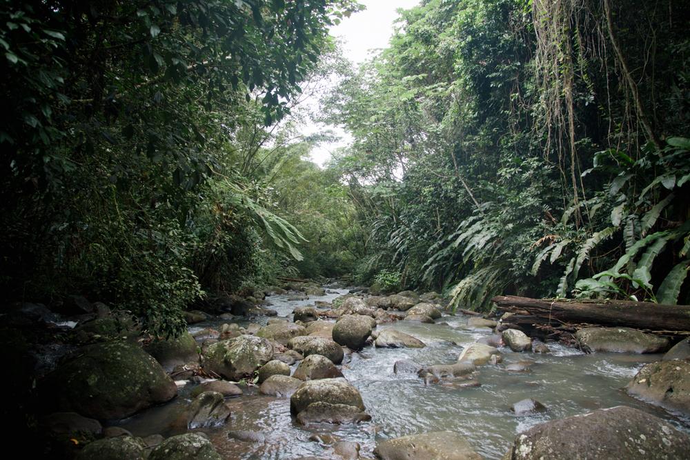 Grenada_WEB-20.jpg