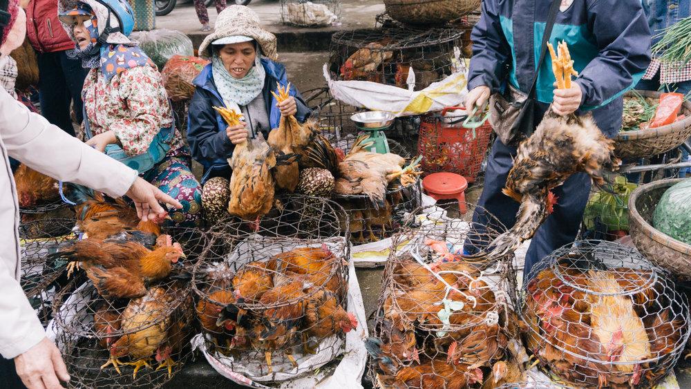 Vietnam_WEB_Preview-72.jpg