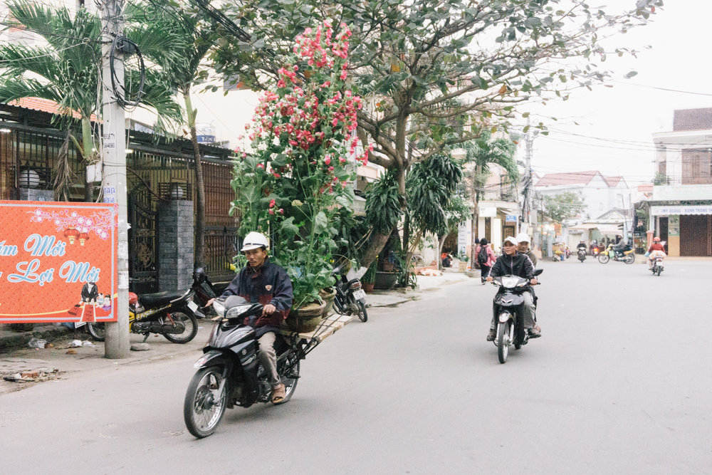 Vietnam_WEB_Preview-94.jpg