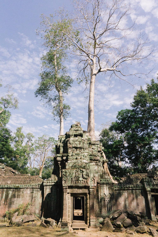 Cambodia_WEB_Preview-104.jpg