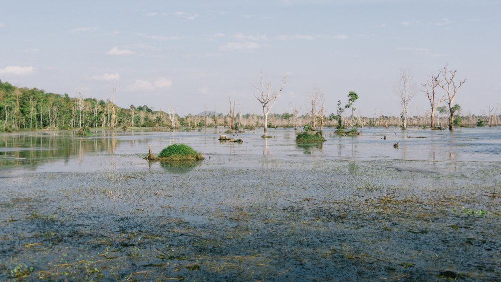 Cambodia_WEB_Preview-107.jpg