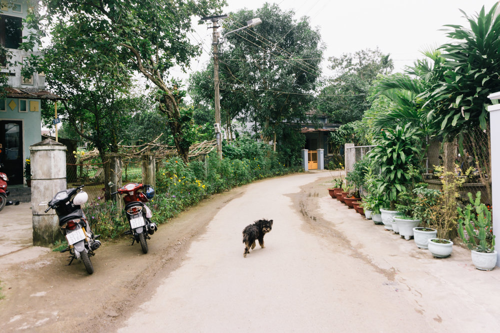 Vietnam_WEB_Preview-105.jpg