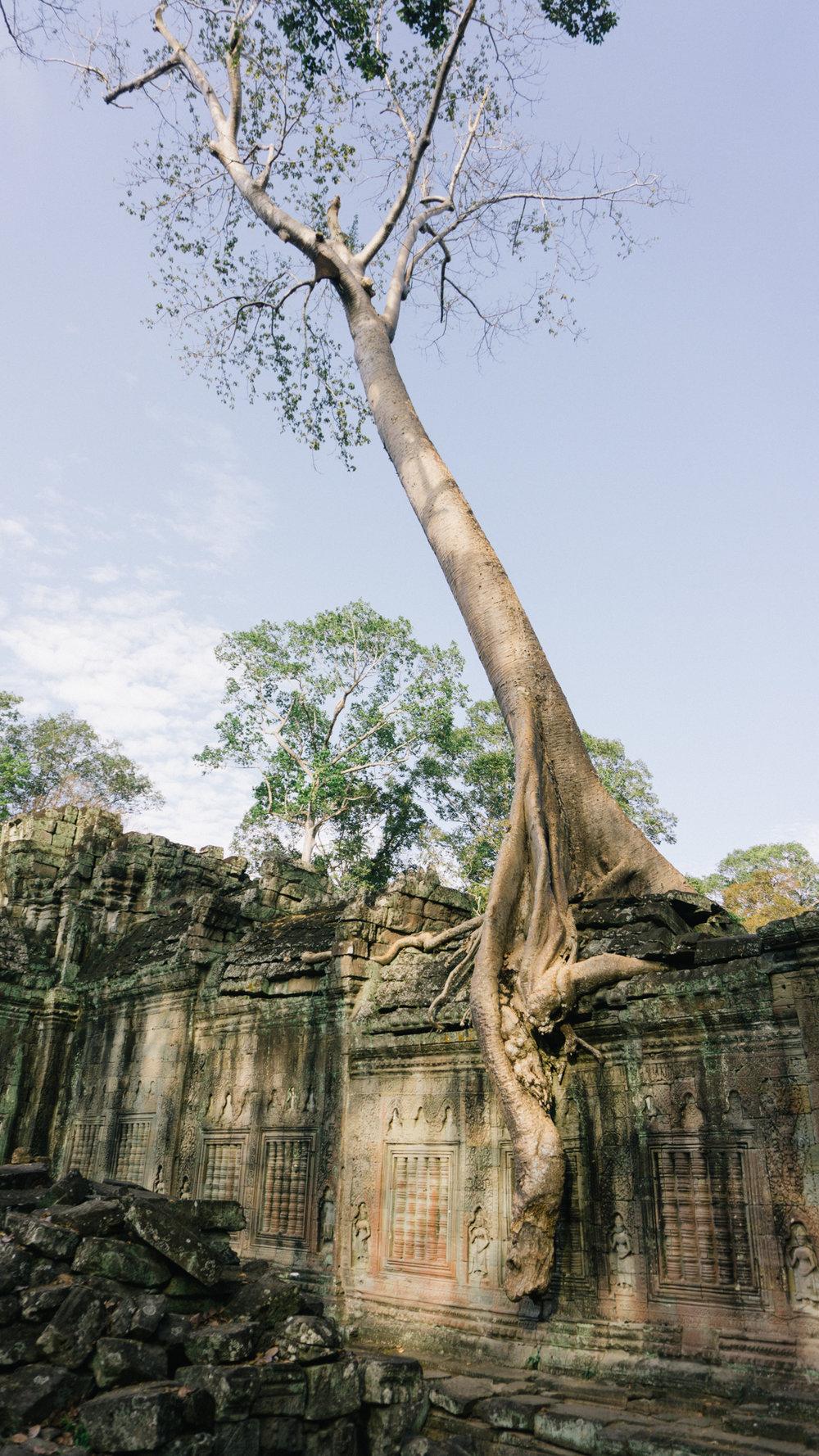 Cambodia_WEB_Preview-113.jpg