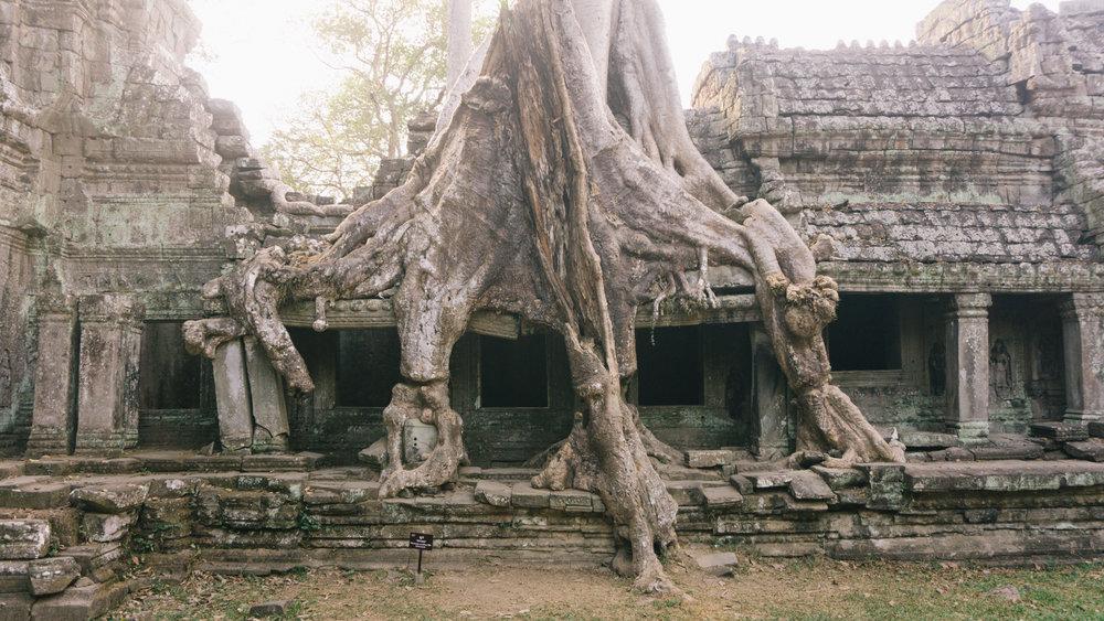 Cambodia_WEB_Preview-114.jpg