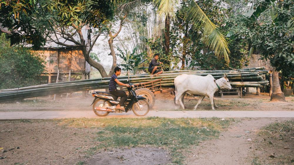 Cambodia_WEB_Preview-183.jpg