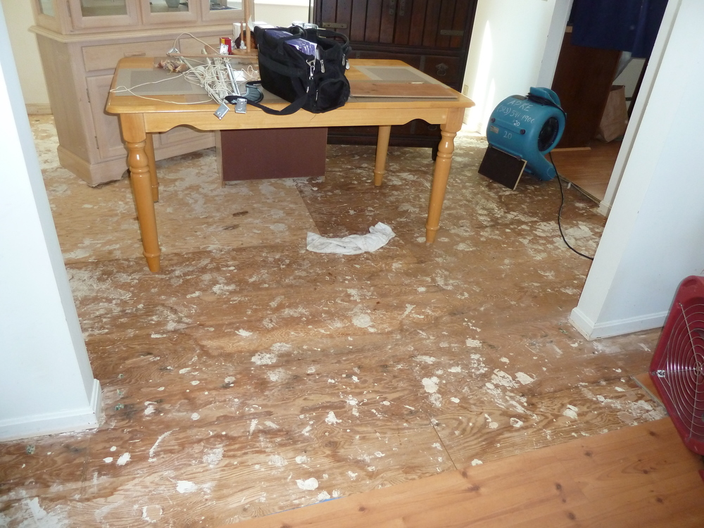 Dining room floors damaged from water pipe burst