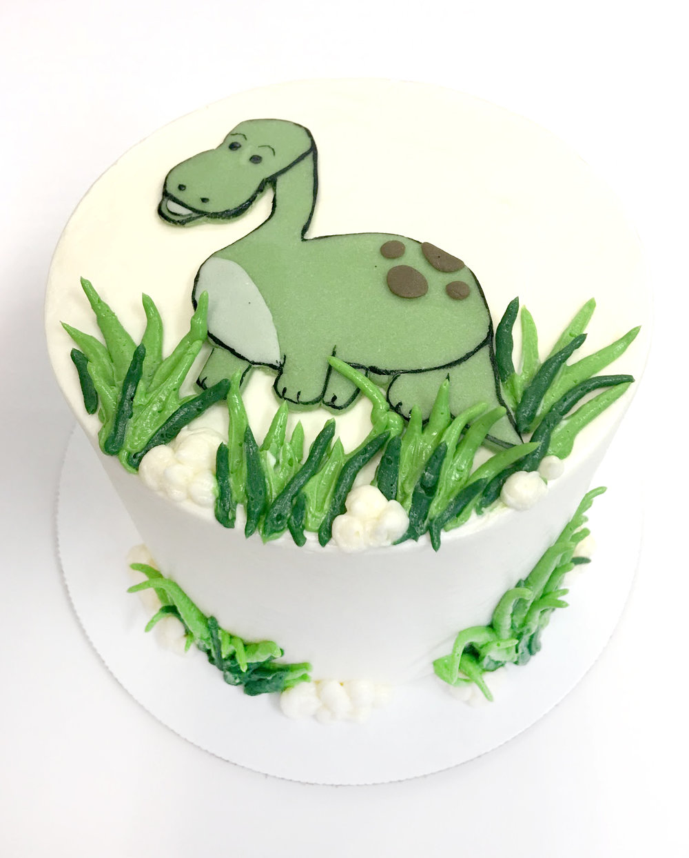 Dinosaur buttercream drawing.jpg