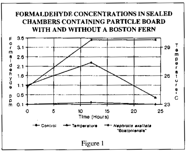 Figure 1 from the study linked above, showing formaldehyde  concentrations being removed by a Boston fern.