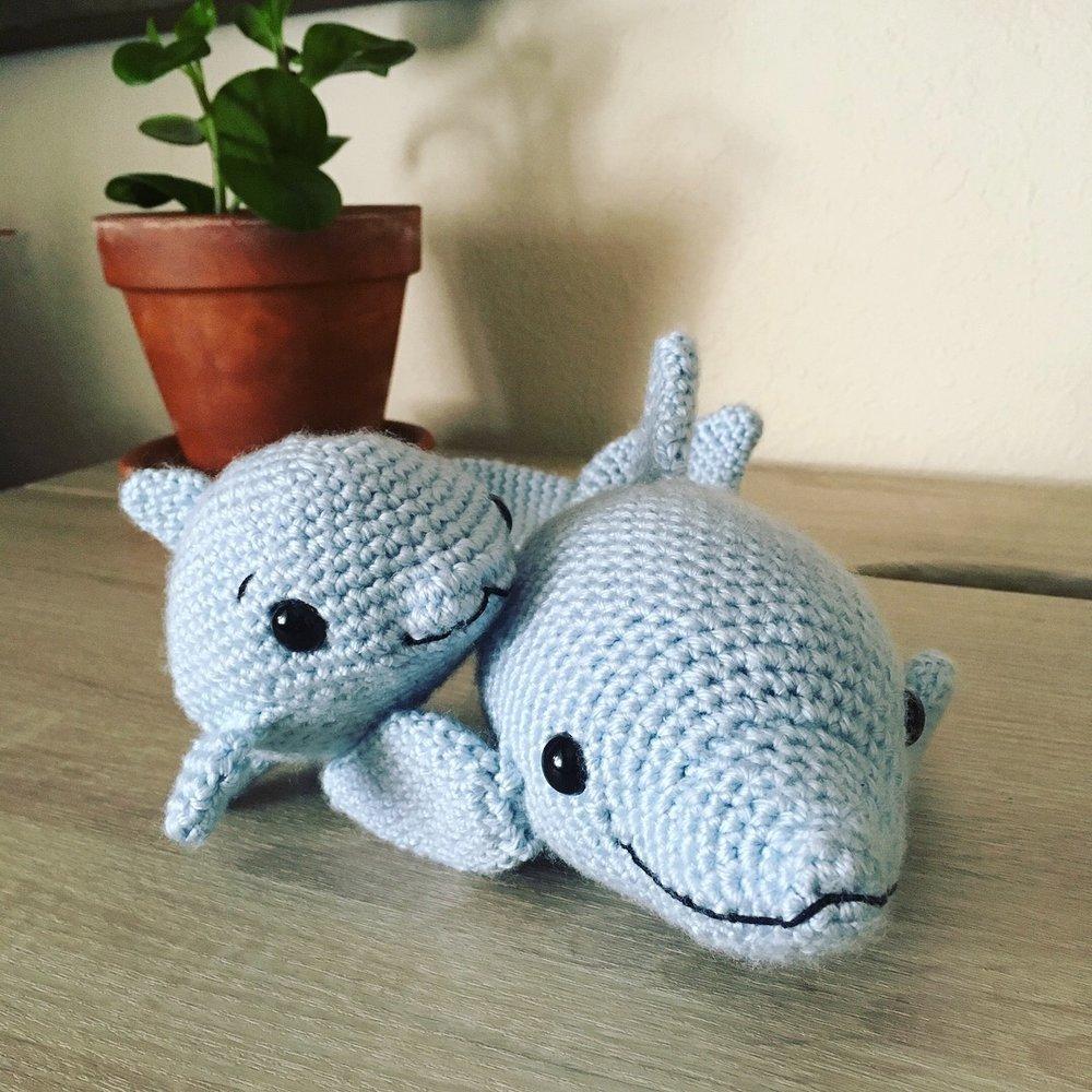 dolphin-4.jpg