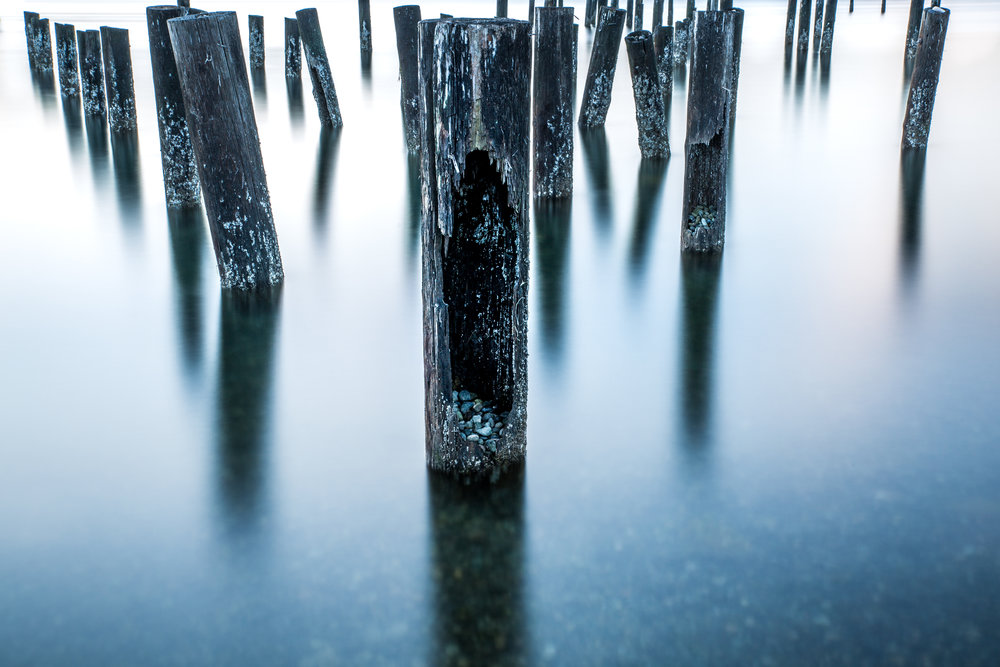 pilings-1.jpg