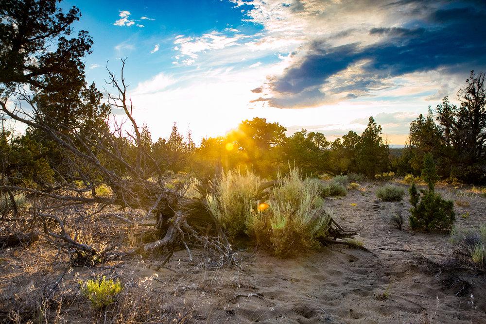 desert sunset-1.jpg