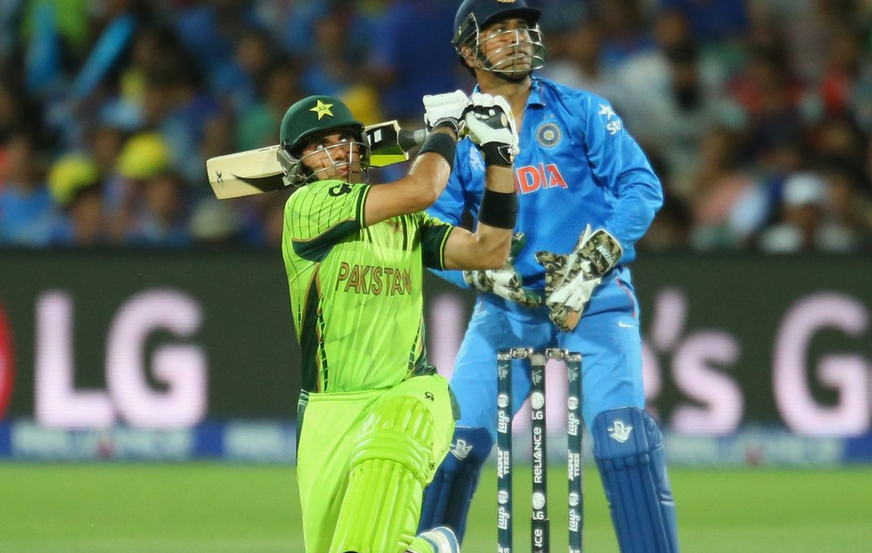 A shot from India and Pakistan's game in the cricket world cup this week.