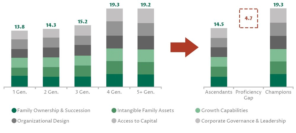 Source:THE INSTITUTIONALIZATION OF FAMILY FIRMS From Asia-Pacific to the Middle East, INSEAD