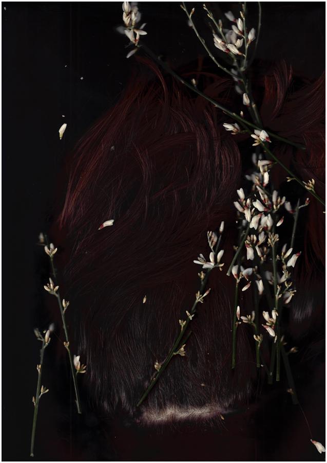 "Cabeza dura, pelo suave , 2014.Photograph. Digital c-type print. 30"" x 45"""
